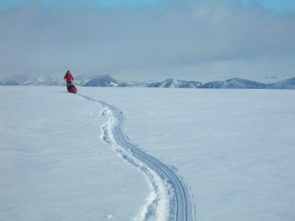 Image result for perseverance, antarctica